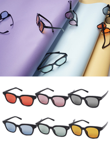 21698 - Basic Tint Sunglasses <br>
