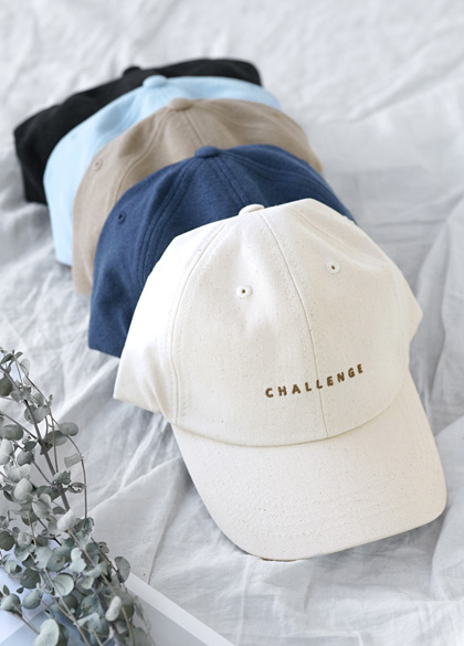 24400 - Neat Chelsea embroidery ball cap <br><br>